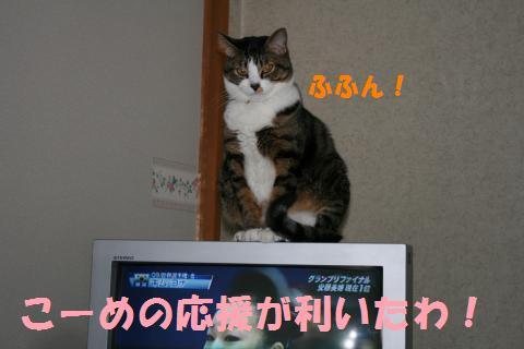 031_convert_20091205223902.jpg