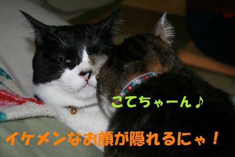 033_convert_20091130230135.jpg