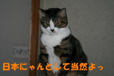 035_convert_20091205224035.jpg