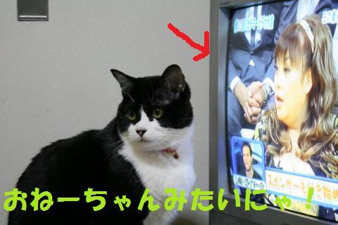 037_convert_20100108213458.jpg