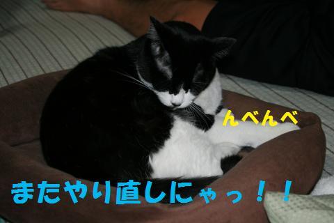 053_convert_20091121212738.jpg