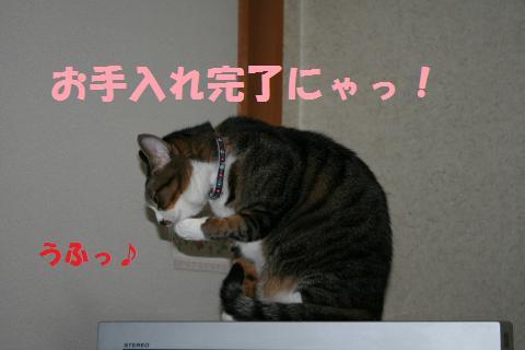 053_convert_20091126223257.jpg