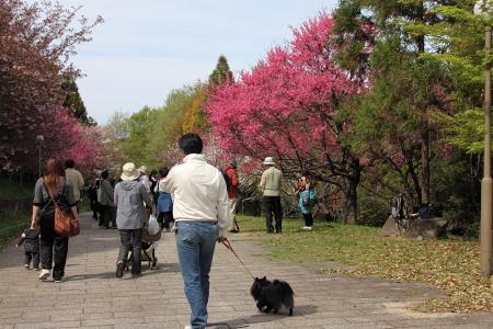 0417-7鶴見緑地