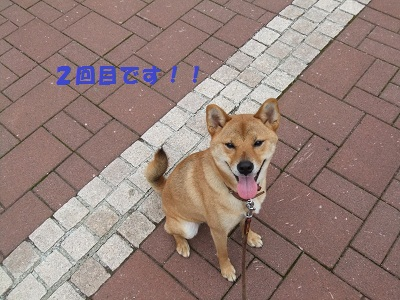 DSCF2502.jpg
