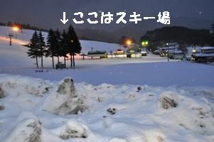 DSC_0147_20120106154333.jpg