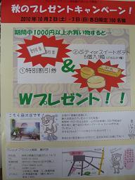 011_20101003132417.jpg