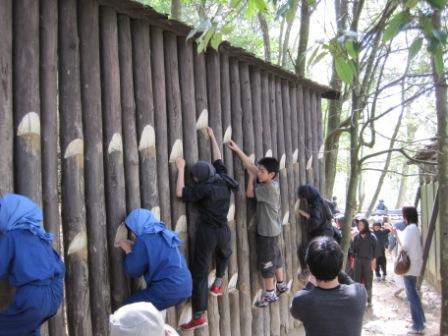 塀渡りIMG_0749