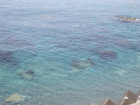 海IMG_0814