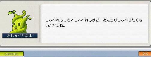 Maple73.jpg