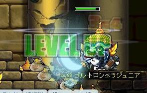 Maple91.jpg