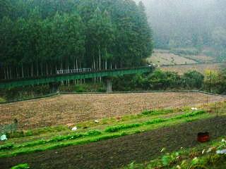 200911033b.jpg