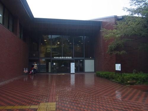 長瀞雨ドライブ-6