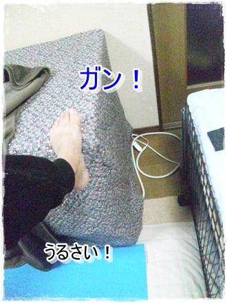 010_20110123235546.jpg