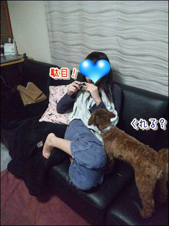 014_20110221231107.jpg