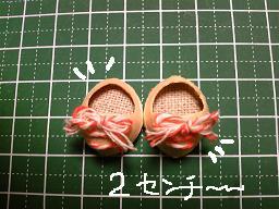 木の実の靴2