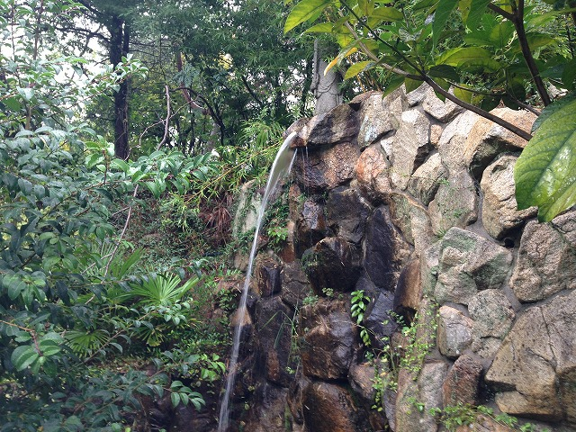 IMG_7720聖天さん裏の滝
