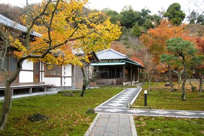 長寿寺~居残り、紅葉。