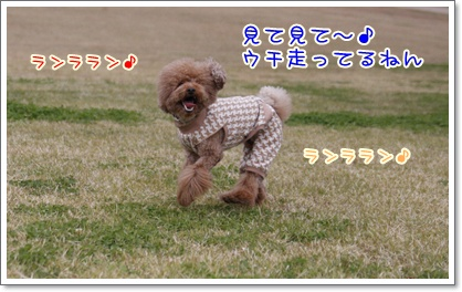 a_20091129221750.jpg