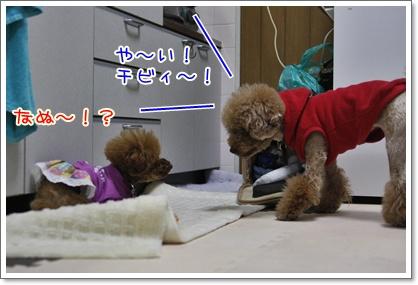 a_20091204005151.jpg