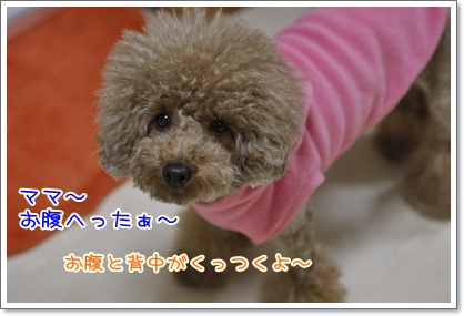 a_20091215194706.jpg