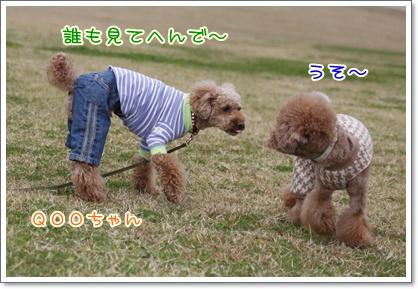 b_20091129221750.jpg