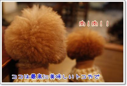 b_20091130000637.jpg