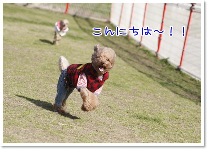 b_20091221234845.jpg