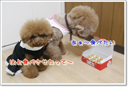 b_20100110234338.jpg
