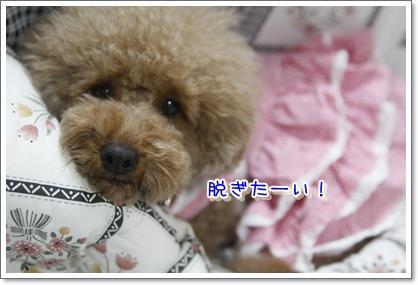 b_20100113221945.jpg