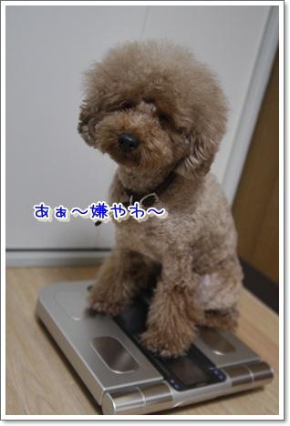 b_20100122001501.jpg
