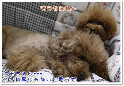 c_20091118001744.jpg