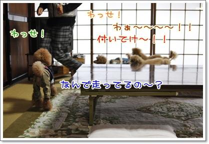 c_20091124001452.jpg