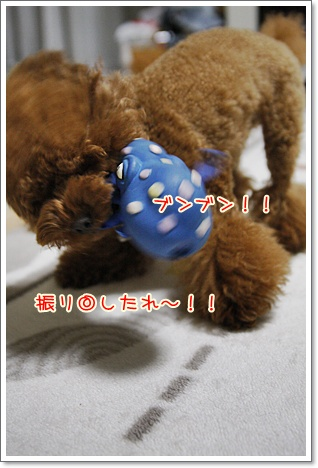 c_20091127000108.jpg
