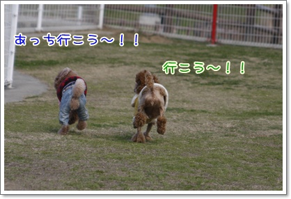 c_20091221234845.jpg