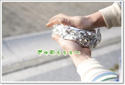 c_20100112193420.jpg