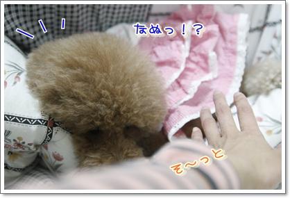 c_20100113221945.jpg