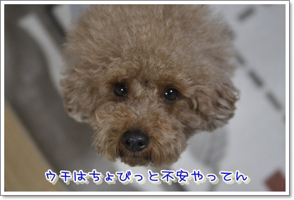 c_20100116001122.jpg