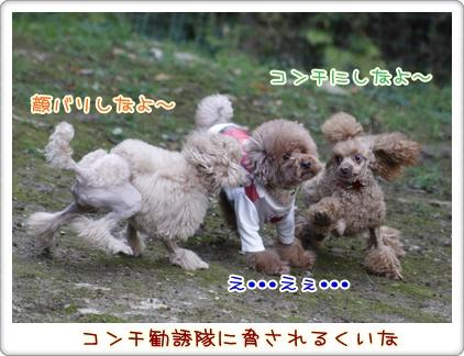 e_20091123220310.jpg