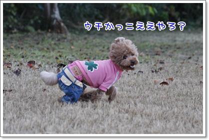 f_20091108221659.jpg