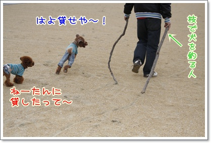 f_20091115222420.jpg