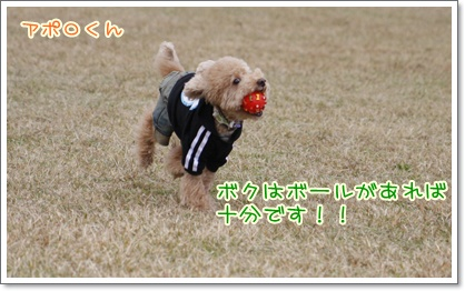 f_20091129221749.jpg