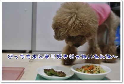 f_20091215194706.jpg