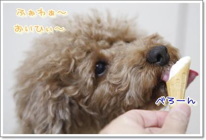 f_20100110002345.jpg