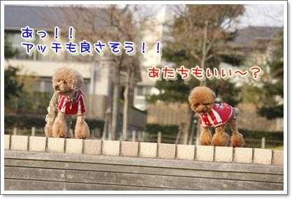 i_20100112194852.jpg