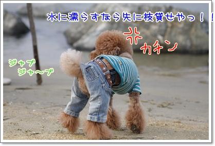 j_20091115224305.jpg