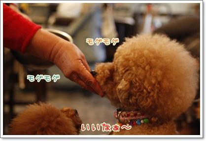 j_20091130001344.jpg