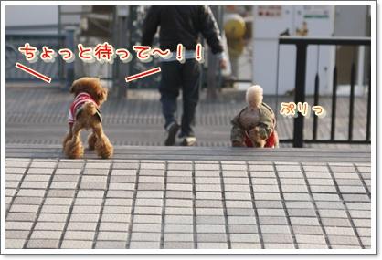 j_20100112194852.jpg