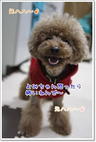 k_20091204005914.jpg