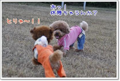 m_20091108224511.jpg