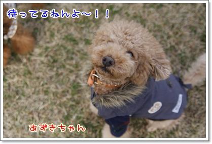 n_20091129224557.jpg